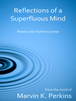 Reflections of a Superfluous Mind