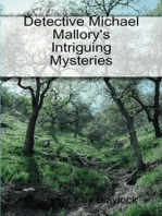 Detective Michael Mallory's Intriguing Mysteries