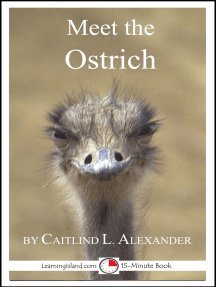 Meet the Ostrich: A 15-Minute Book for Early Readers