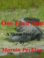 One Eyed Sam