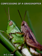 Confessions of a Grasshopper
