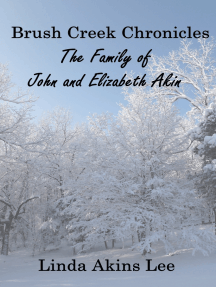 Brush Creek Chronicles: The Family of John and Elizabeth Akin