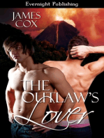 The Outlaw's Lover