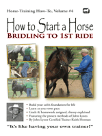How to Start a Horse