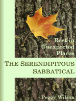 The Serendipitous Sabbatical