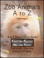 Zoo Animals A