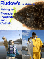 Rudow's e-Guide to Fishing for Flounder, Panfish, and Catfish