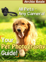 Your Pet Photography Guide