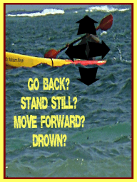 Go Back? Stand Still? Move Forward? Drown?