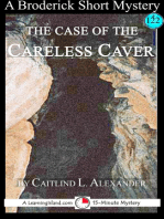 The Case of the Careless Caver