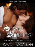 Silver Silk Ties