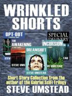 Wrinkled Shorts