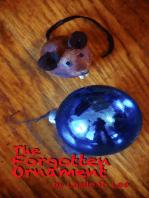 The Forgotten Ornament