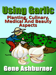 Using Garlic: Planting, Culinary, Medical And Beauty Aspects