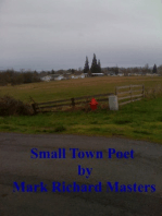 Small Town Poet