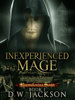 Inexperienced Mage