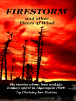 Firestorm and other Pieces of Wind