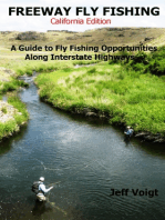 Freeway Fly Fishing /California Edition