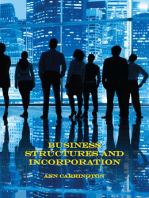 Business Structures and Incorporation