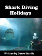 Shark Diving Holidays