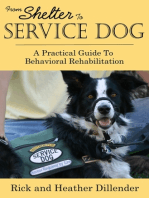 From Shelter To Service Dog