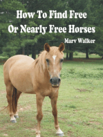 How To Find Free or Nearly Free Horses