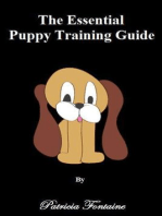 The Essential Puppy Training Guide