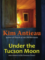 Under the Tucson Moon