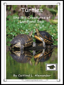 Turtles: Shelled Creatures of Land and Sea: Educational Version