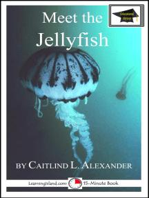 Meet the Jellyfish: Educational Version