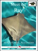 Meet the Ray