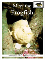Meet the Frogfish