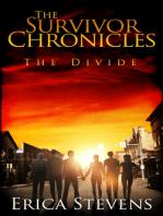 The Survivor Chronicles