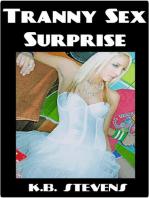 Tranny Sex Surprise