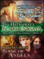 Black Enigma 3