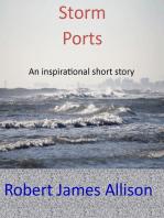 Storm Ports