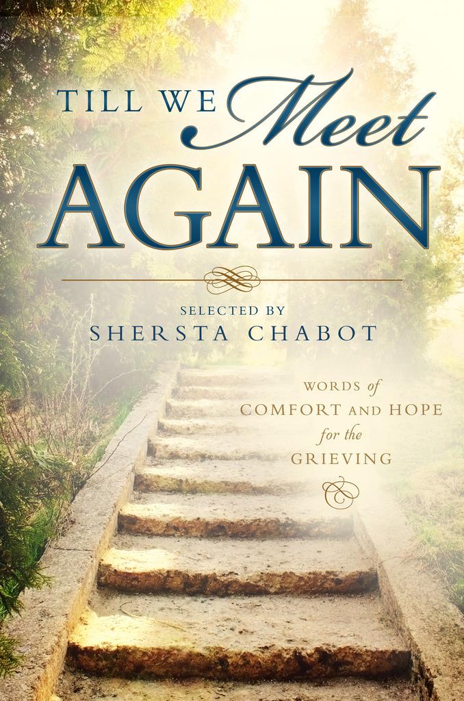 Till We Meet Again By Shersta Chabot By Shersta Chabot Read Online