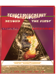 Echocardiography Beyond the First Clinical Scenarios: A Guide for Your First Job
