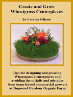 Creating and Growing Wheatgrass Centerpieces