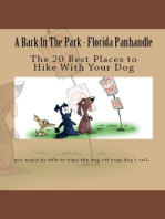 A Bark In The Park-Florida Panhandle