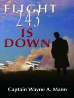 Flight 243 Is Down