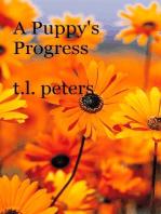 A Puppy's Progress