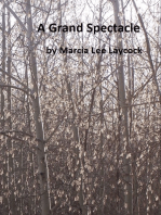 A Grand Spectacle