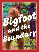 Bigfoot and the Boundary