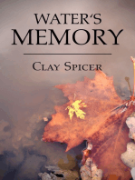 Water's Memory