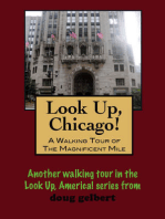 Look Up, Chicago! A Walking Tour of the Magnificent Mile