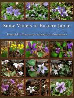 Some Violets of Eastern Japan