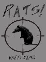 Rats! (A short story)