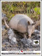 Meet the Armadillo