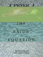 The Exide Equation